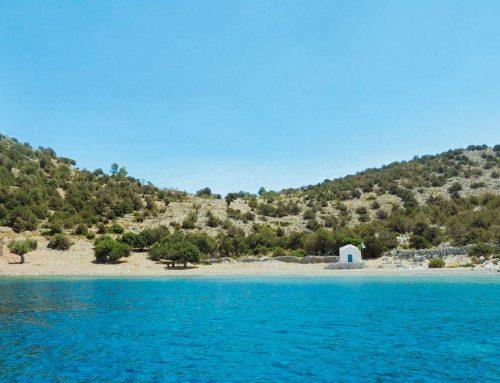 5 : Νήσος Δοκός